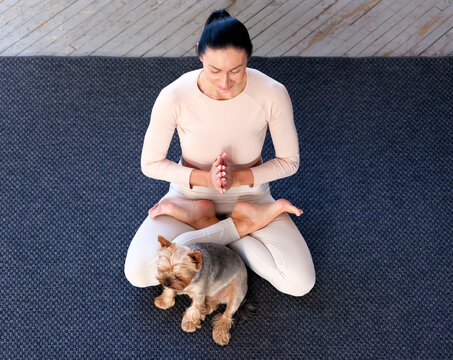 Doing yoga at home. Woman sitting in a meditation pose on a carpet with her dog