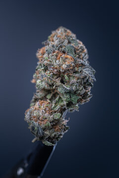 Cannabis Flower Macro - Strain: Wedding Crasher