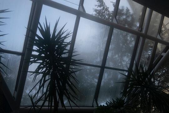 steamy window background