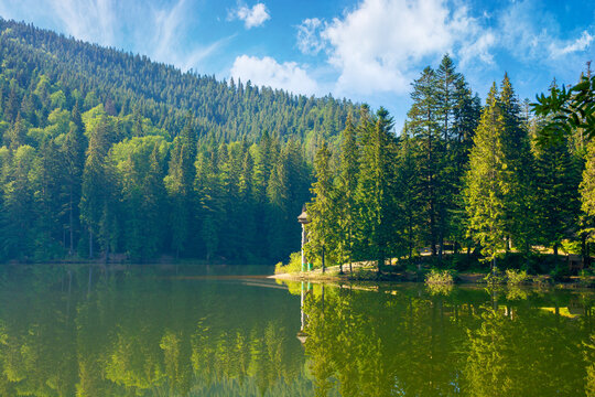 mountain lake in the morning. summer landscape with forest reflecting in the water. nature scenery of Synevyr National park in Carpathian mountains, ukraine. sunny weather with clouds on blue sky