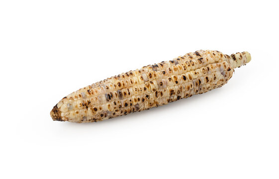 Grill corn on isolated white background