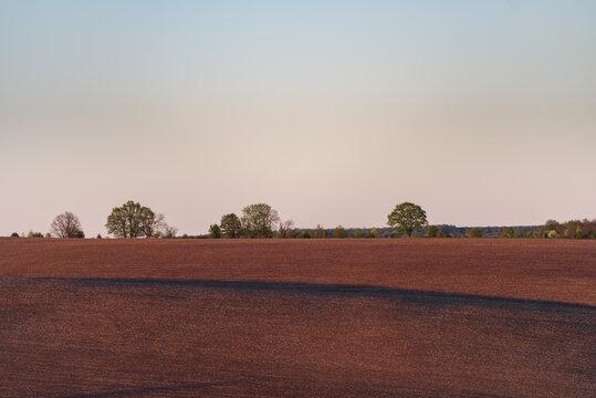 Plowed field on hills in evening light, South-Western Ukraine