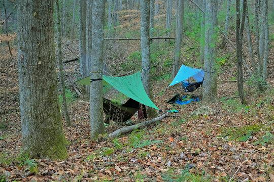 Hammock camping in the Cohutta Wilderness mountains in Georgia