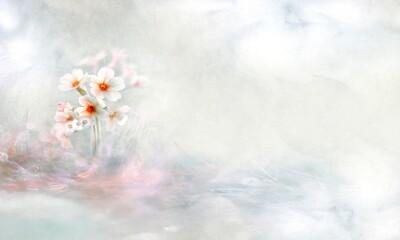 Fototapeta Kwiat pierwiosnek,  panoramiczne, copy space obraz