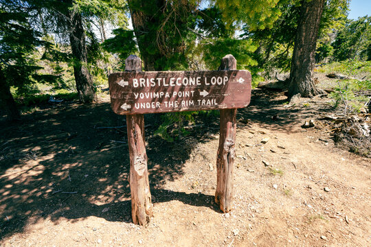 Trail direction sign in Bryce Canyon National Park - Bristlecone Loop and Yovimpa Point directions for hikers