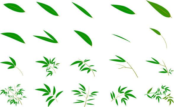 七夕のかわいい笹の葉