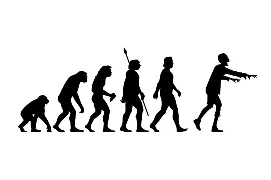 Theory of evolution of man silhouette from ape to zombie. Vector illustration