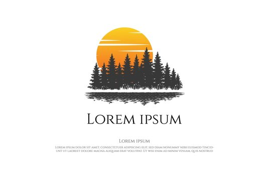 Sunset Sunrise Pine Cedar Spruce Conifer Larch Cypress Evergreen Fir Trees Forest with Lake River Creek Logo Design Vector