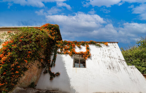 Oaxaca, Mexico, Scenic old city streets and colorful colonial buildings in historic city center,