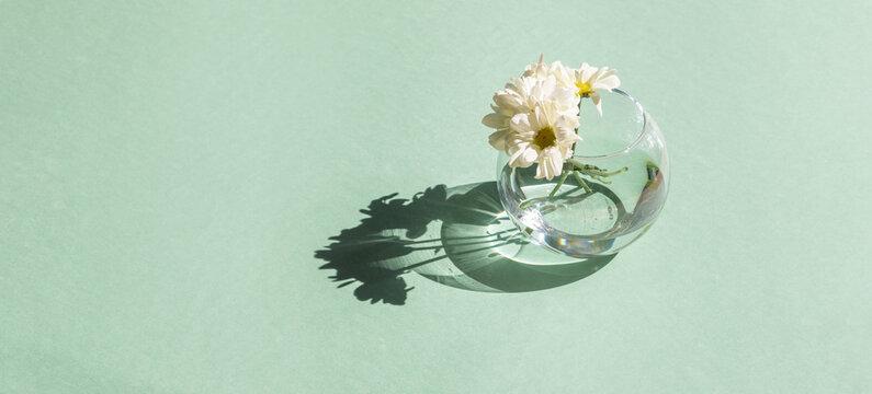 Cozy spring still life. Greeting card mockup scene. vase of flowers on green table