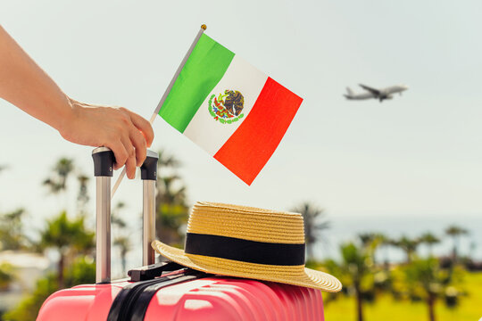 Woman with pink suitcase, hat and Mexico flag standing on passengers ladder and getting out of airplane opposite sea coastline with palm trees.