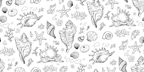 Seamless pattern with seashells, corals and starfishes. Marine background. Vector illustration in sketch style. Perfect for greetings, invitations, wrapping paper, textile, wedding and web design.