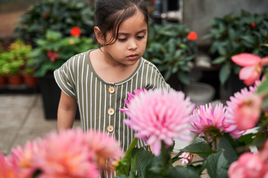 Girl looking at the flowers with interest while walking through the greenhouse