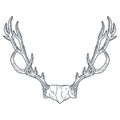 reindeer horns icon