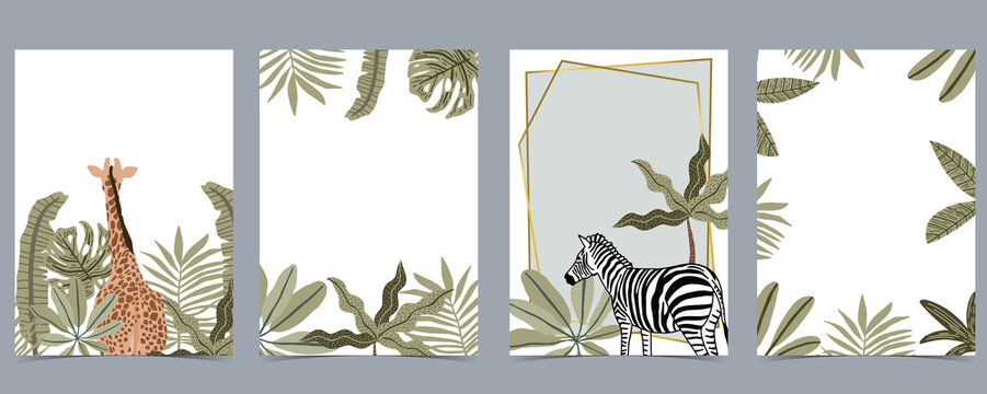 Safari collection with giraffe and zebra are standing on white background