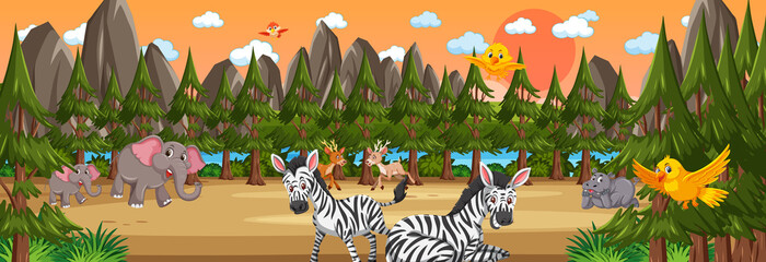 Forest panorama at sunset time scene with various wild animals