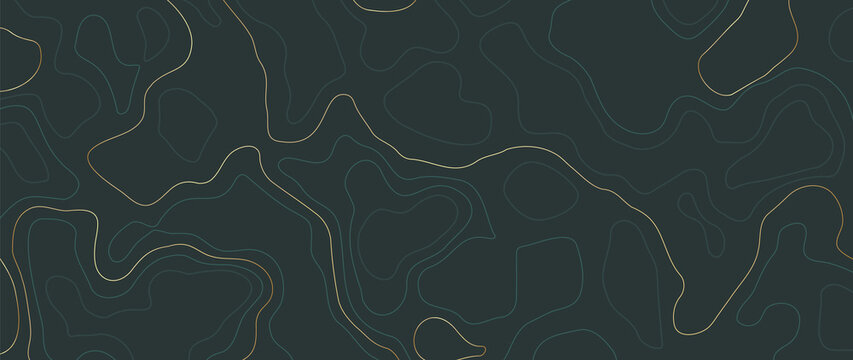 abstract line art background vector.  Mountain topographic map background with lines  texture.  Wallpaper design for wall arts, fabric , packaging , web, banner, app, wallpaper.