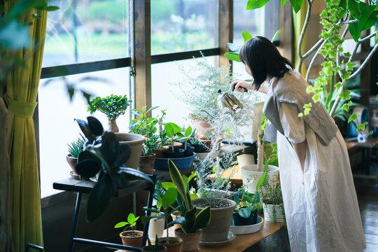 笑顔で観葉植物の様子を見る若い女性