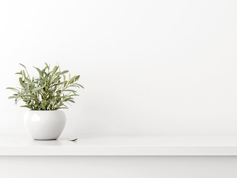 Empty wall mockup with green olive twigs in vase standing on shelf with white background. Simple, neutral, minimal room decoration. 3d rendering, illustration