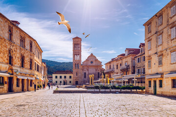 Fototapeta Main square in old medieval town Hvar with seagull's flying over. Hvar is one of most popular tourist destinations in Croatia in summer. Central Pjaca square of Hvar town, Dalmatia, Croatia. obraz