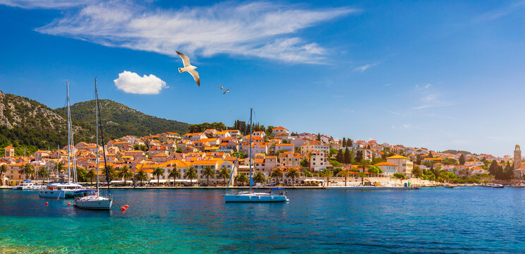 Hvar town with seagull's flying over city, famous luxury travel destination in Croatia. Boats on Hvar island, one of the many Islands near Dubrovnik and Korcula on the Dalmatian Coast of Croatia.