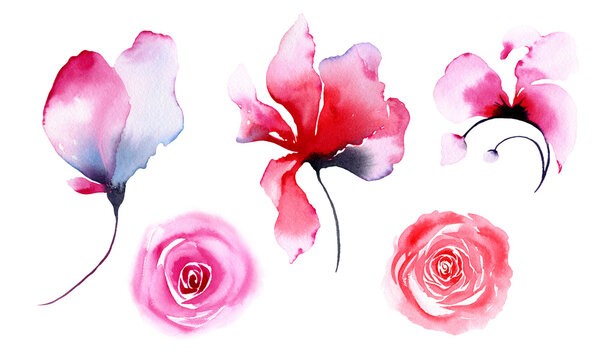 Set of transparent flowers. Pink, red, blue roses. Watercolor illustration isolated on white background