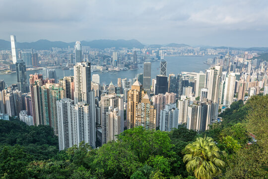 Skyline and skyscrapers of the city of Hong Kong with green jungle in the foreground