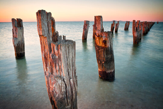 Rows of rustic wooden pillars sticking out of the water