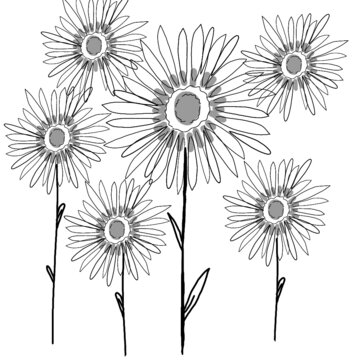 hand drawn illustration of sunflowers in pattern
