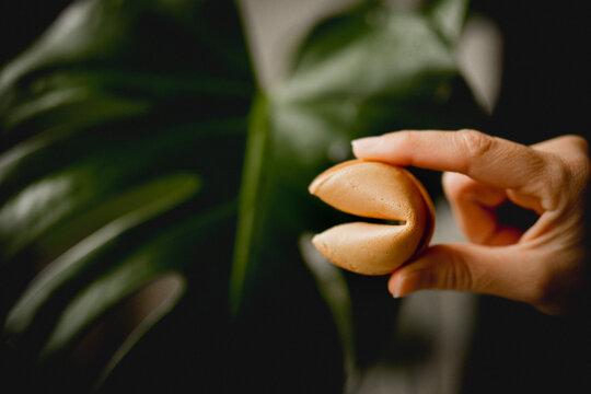 Crop hand with fortune cookie