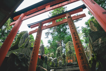 Mystical stone temple shrine covered with moss and surrounded by torii gates at Fishimi Inari Taisha in Kyoto, Japan