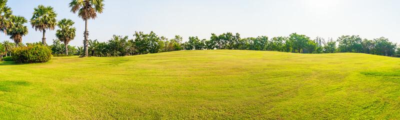 Panorama green grass on a golf field