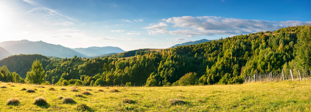 rural panorama in mountains at sunset. trees and fields on grassy rolling hills. beautiful countryside scenery of transcarpathia region, ukraine, in evening light. wonderful sunny weather in autumn