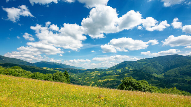 countryside landscape in mountains. grassy meadow on the hill. beautiful nature landscape. sunny summer day. clouds on the sky. travel back country concept