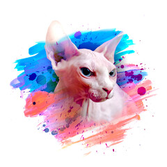 abstract colored sphinx face, graphic design illustration