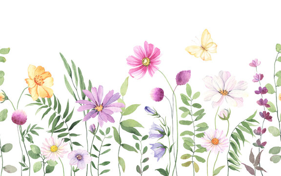 Wildflowers, green wild plants and flying butterfly, floral seamless pattern with colorful flowers, watercolor horizontal border isolated on white background, hand painting illustration summer meadow