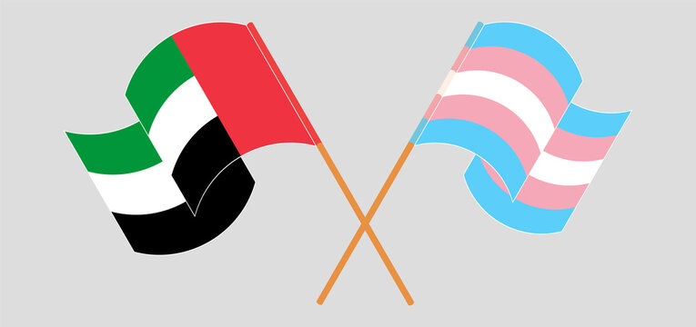 Crossed and waving flags of the United Arab Emirates and transgender pride
