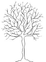 Obraz Drzewo zimą - fototapety do salonu