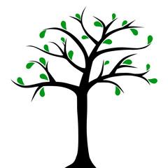Obraz Drzewo z kilkoma liśćmi - fototapety do salonu