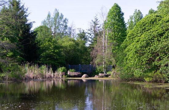 Webster Ny Pond
