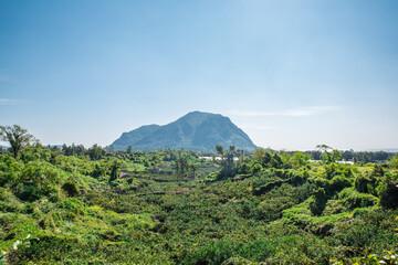 Fototapeta There are numerous peaks in Jeju Island. obraz