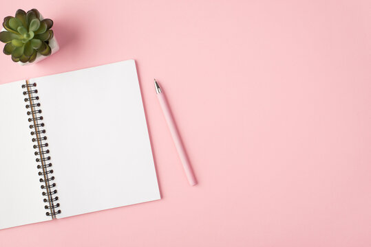 Top view photo of open diary pink pen and flowerpot on isolated pastel pink background with copyspace