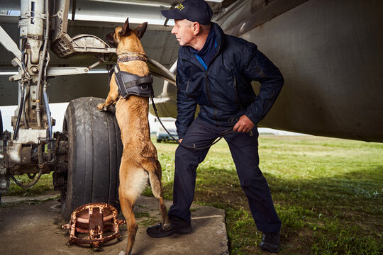 Security officer and police dog inspecting airplane at aerodrome