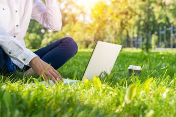 Businessman using laptop computer on green grass