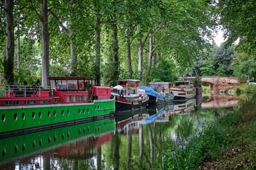 Obraz walk along the canal du midi - fototapety do salonu