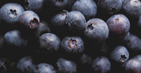 Obraz Close up view of ripe blueberries. - fototapety do salonu
