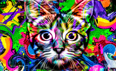 close up of colorful background whith cat