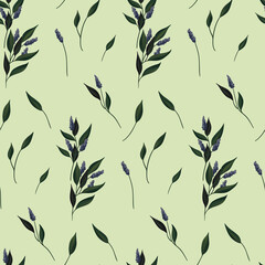 Fototapeta Seamless botanical pattern in vintage style. Composition of herbs with numerous leaves and small corollas of blue flowers. Vector. obraz