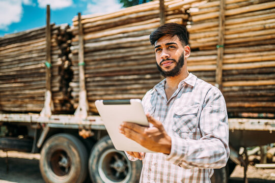 Portrait of Latin young man working with a digital tablet beside tree trunks on truck.