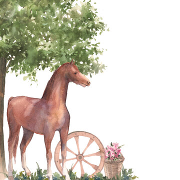 Watercolor farm horse illustration. Rustic painting of horse, wheel, tree isolated on white background